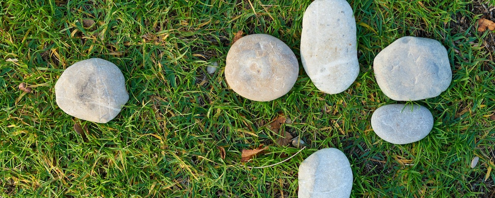 Rocks in the grass in Texas.