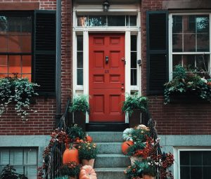A doorstep decorated with pumpkins and plants.